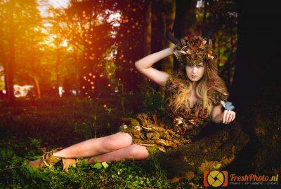 elfia2018_daisy_tree_TomB